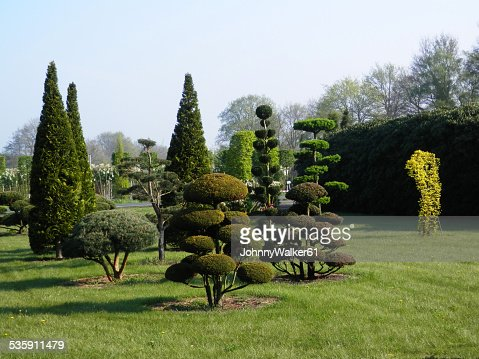 Tree sculptures : Stock Photo