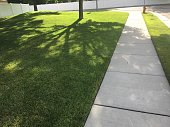 Tree shadows on the lawn