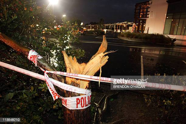 A tree sits severed in half outside the Albany Shopping Centre in the North Shore of Auckland on May 3 2011 after a freak tornado hit the area...