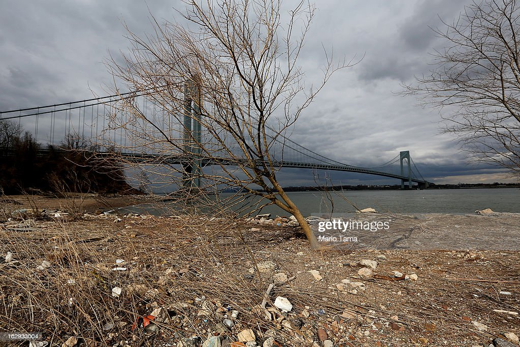 A tree stands on a still-closed beach damaged by flooding from Hurricane Sandy in front of the Verrazano-Narrows Bridge on March 1, 2013 in the Staten Island borough of New York City. A government plan to purchase properties damaged by the storm in Staten Island remains on track.