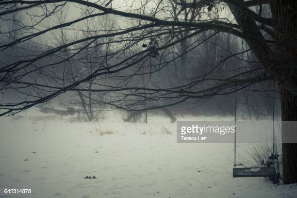 Tree swing in winter
