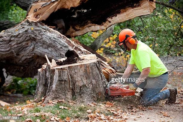 Baumtrimmer oder Bauarbeiter