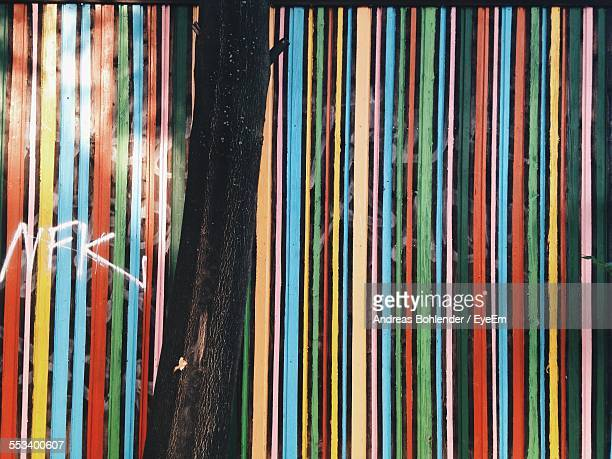 Tree Trunk In Front Of Striped Wall