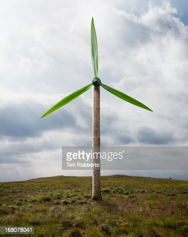 Tree Wind Turbine on hillside. : Stock Photo