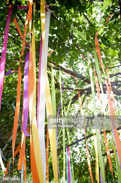 Tree with tied color ribbons
