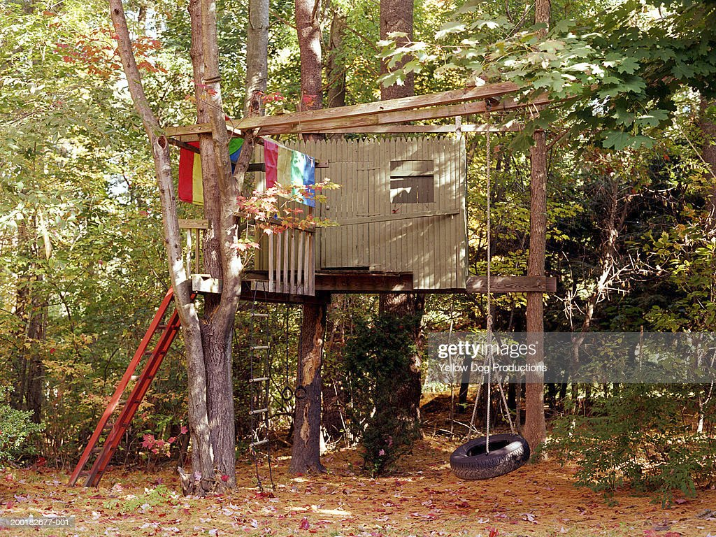 Treehouse in backyard with swing, autumn : Stock Photo