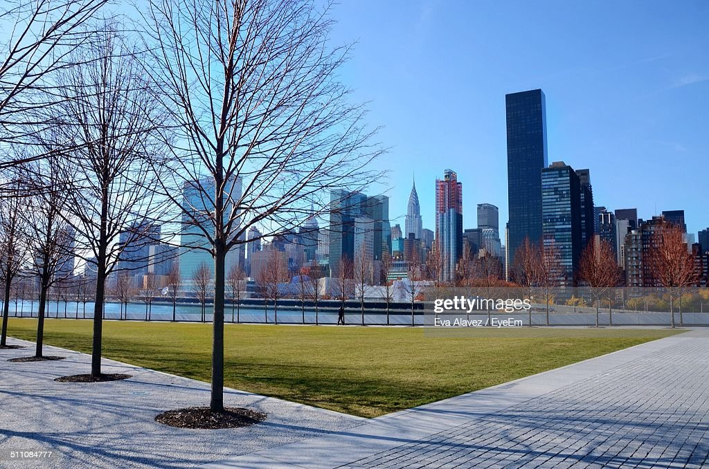 Treelined in park with city skyline in the background