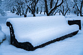 Trees and bench in the Park after the snow completely covered with snow.