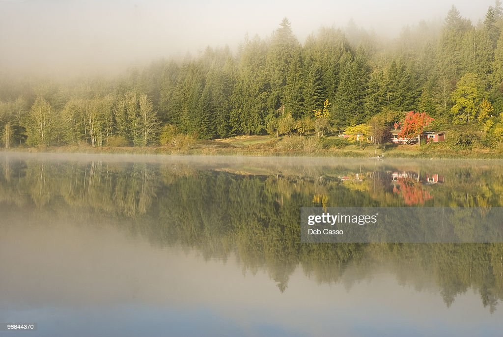 Trees and cottage reflected in lake : ストックフォト