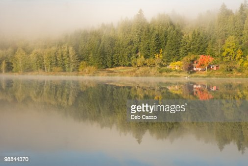 Trees and cottage reflected in lake : Bildbanksbilder