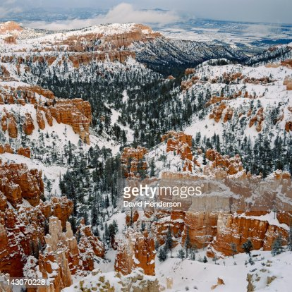 Trees and rock formations in snowy landscape : Stock Photo