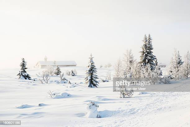 Trees and villagechurch covered in snow, Norway.