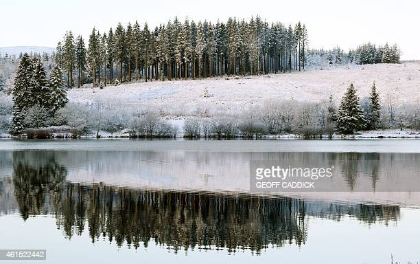 Trees are reflected in the Llwynonn reservoir Brecon Beacons south Wales on January 14 2015 More than 100 schools and nurseries have been shut and...