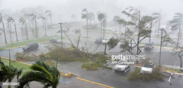 TOPSHOT Trees are toppled in a parking lot at Roberto Clemente Coliseum in San Juan Puerto Rico on September 20 during the passage of the Hurricane...