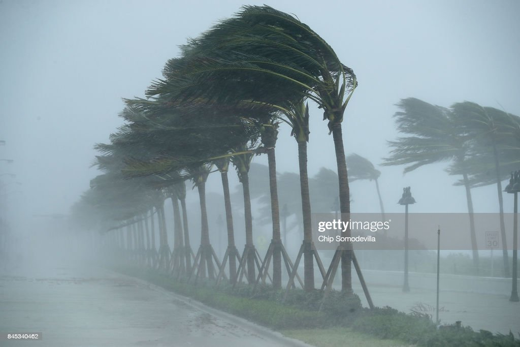 Trees bend in the tropical storm wind along North Fort Lauderdale Beach Boulevard as Hurricane Irma hits the southern part of the state September 10, 2017 in Fort Lauderdale, Florida. The powerful hurricane made landfall in the United States in the Florida Keys at 9:10 a.m. after raking across the north coast of Cuba.