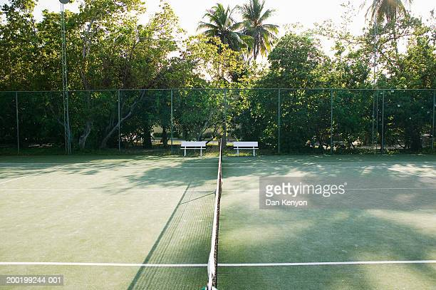 Trees casting shadows across empty tennis court
