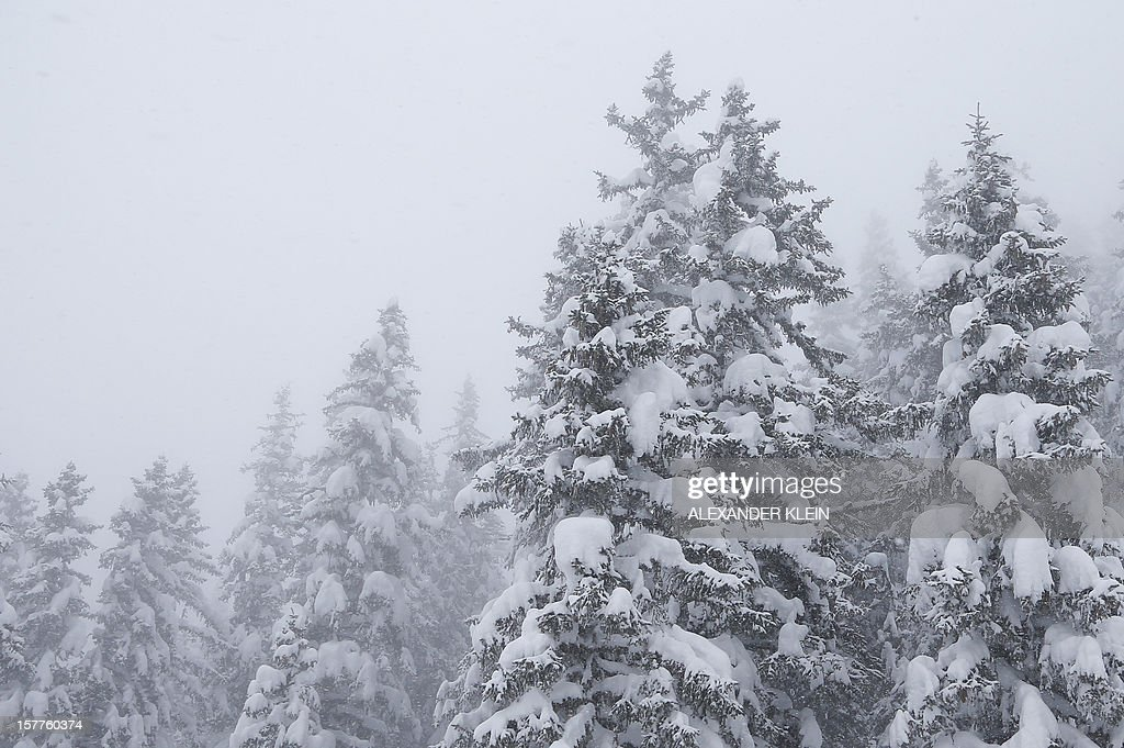 Trees covered with snow are seen in the mountains of Schruns, on December 6, 2012.