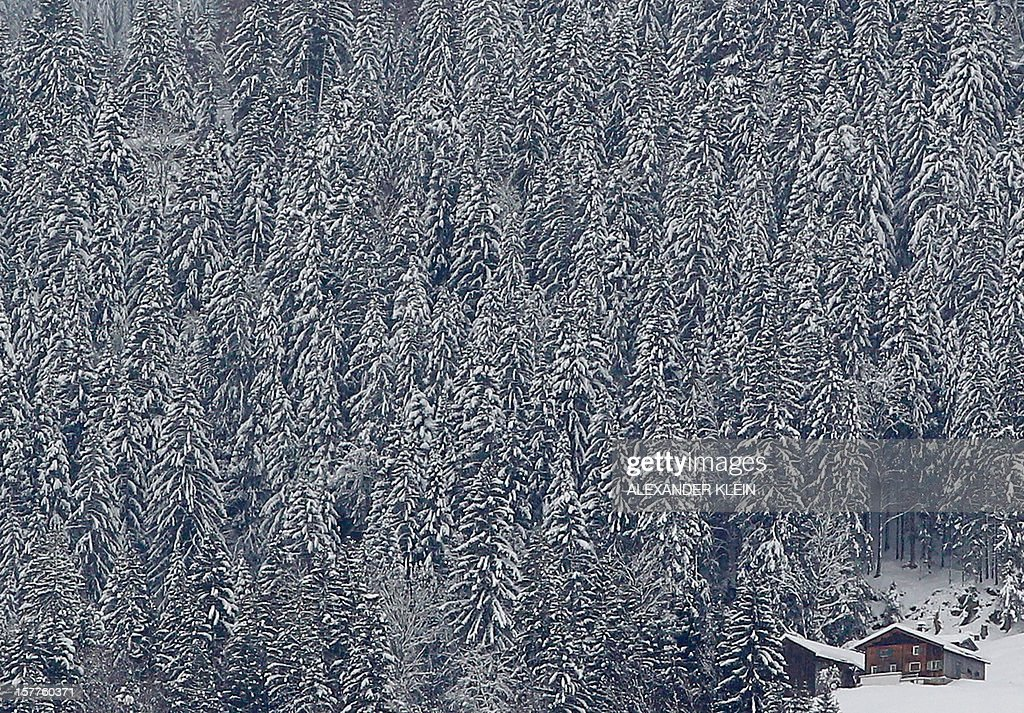 Trees covered with snow are seen next to a house in the mountains of Schruns, on December 6, 2012.