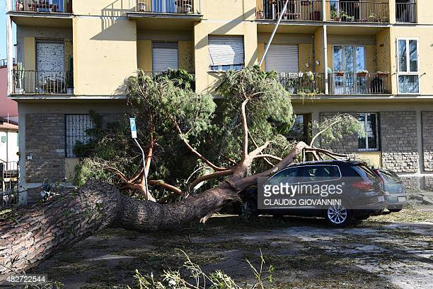 Trees felled by a tornado lie on a car in central Florence on August 2 2015 Some twenty people were wounded on August 1 when a tornado accompanied by...