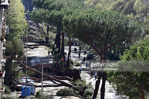 Trees felled by a tornado lie on a central street in Florence on August 2 2015 Some twenty people were wounded on August 1 when a tornado accompanied...