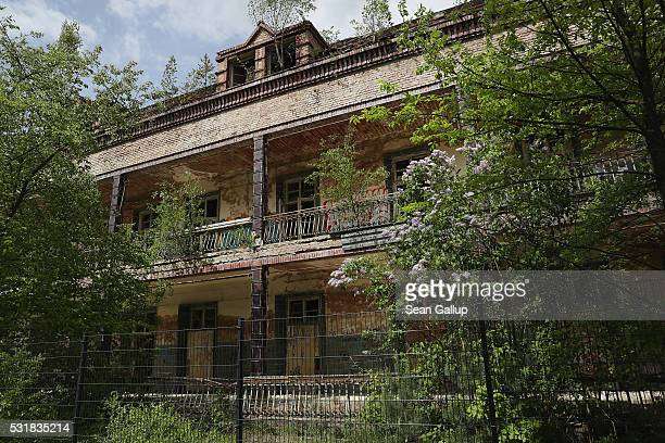Trees grow around the ruins of the Beelitzer Heilstaetten sanatorium on May 16 2016 in Beelitz Germany The 'Baum und Zeit' elevated platform runs for...