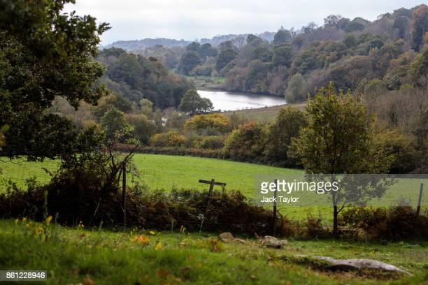 Trees grow in the Loder Valley at Wakehurst 30 years after The Great Storm devastated much of the botanic garden's landscape on October 14 2017 in...