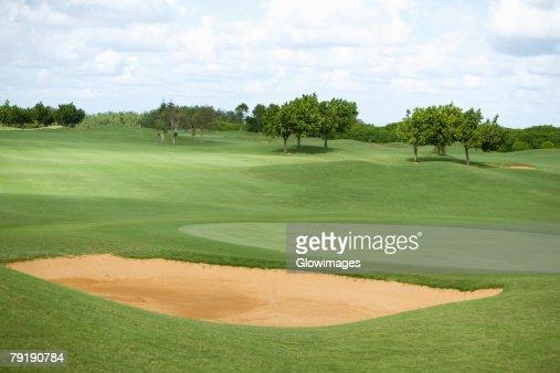 Trees in a golf course, Kauai, Hawaii Islands, USA : Stock Photo