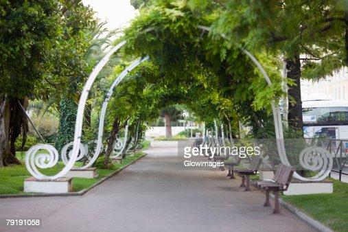 Trees in a park, Monte Carlo, Monaco : Stock Photo