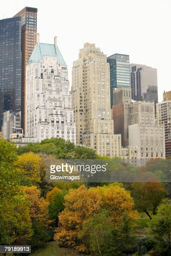 Trees in front of buildings, Central Park, Manhattan, New York City, New York State, USA : Stock Photo