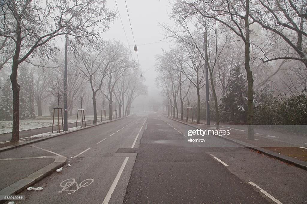 Árboles en el parque de invierno tiempo : Foto de stock