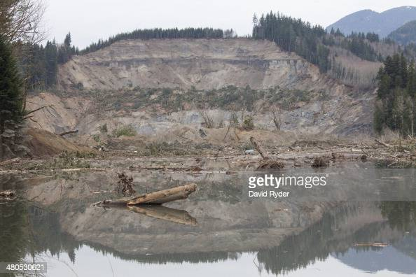 Trees lay in the water in the aftermath of a mudslide and related flooding on March 25 2014 in Oso Washington A massive mudslide on March 22 has...
