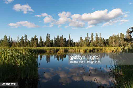 Trees long the shoreline and clouds reflected in the water of Lake Audy in Riding Mountain National Park