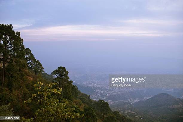 Trees on a hill with a city in the background, Vaishno Devi, Katra, Jammu And Kashmir, India