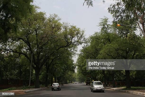 Trees on Akbar road New Delhi