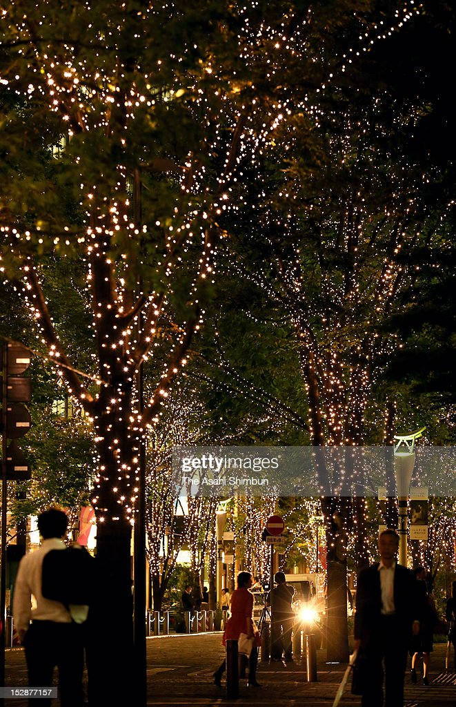Trees on Marunouchi Nakadori street are illuminated during the test illumination on September 27, 2012 in Tokyo, Japan. The illumination start on October 1.