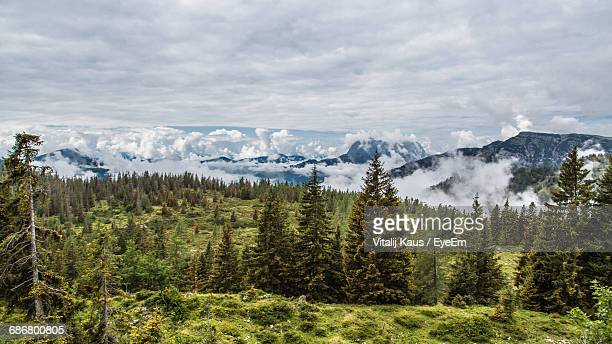 Trees On Mountains Against Cloudy Sky