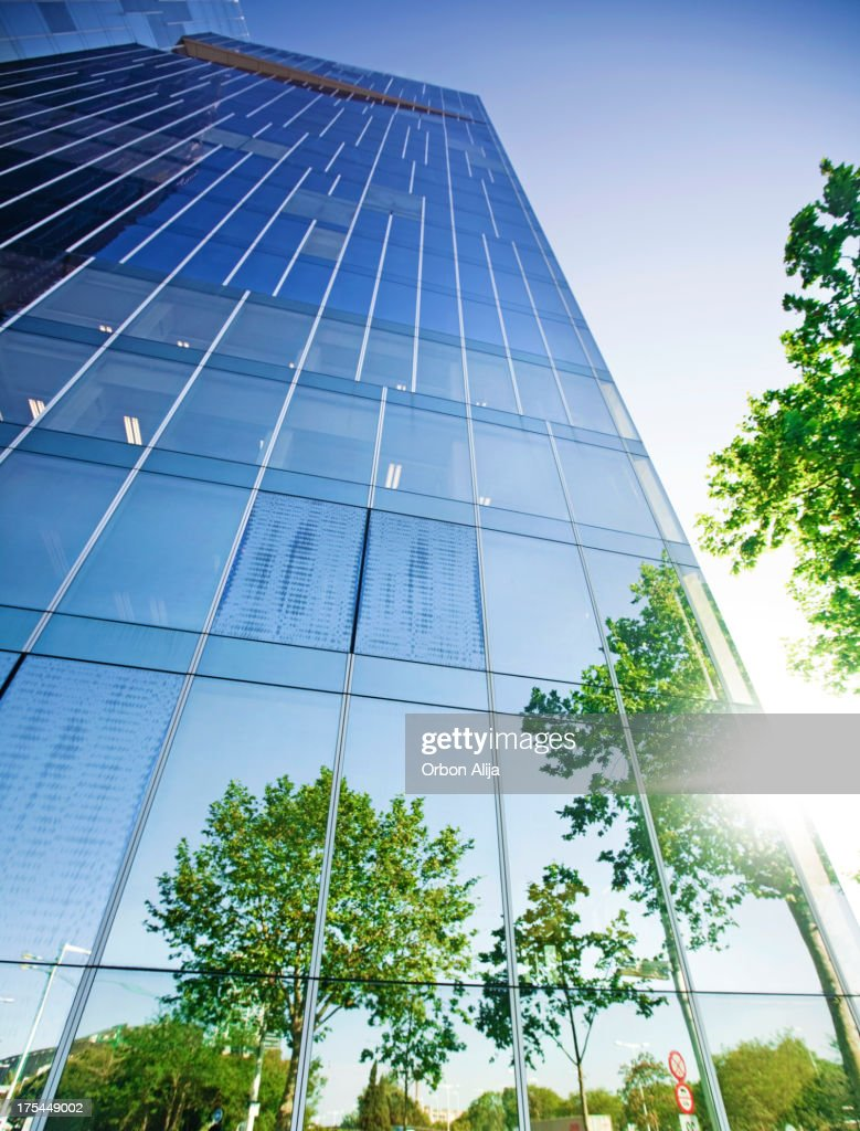 Trees reflected on building : Stock Photo
