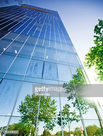 Trees reflected on building