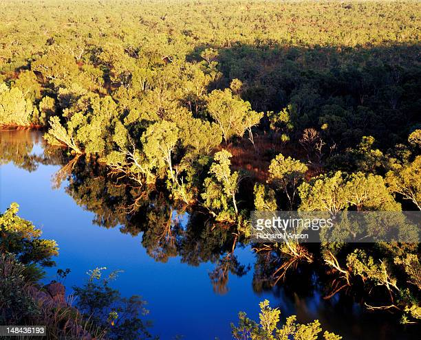 Trees reflecting in Katherine River from Barrawei Lookout.