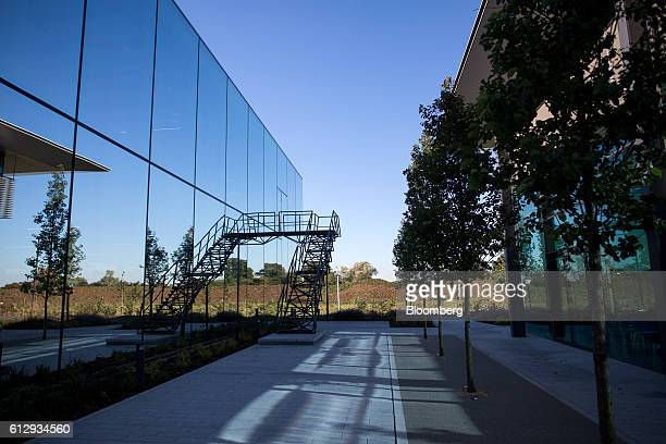 Trees stand in an outdoor space between buildings on the Dyson Ltd campus in Malmesbury UK on Wednesday Oct 5 2016 In addition to cordless cleaning...
