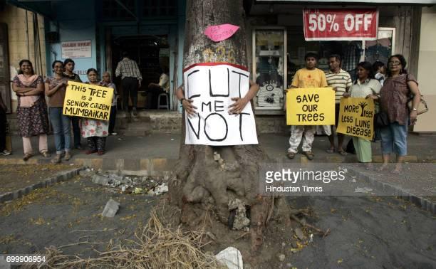 Trees Tree Save Campaign Tree Hug