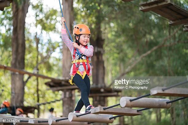 Tree-top Adventure Fun