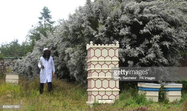 Tregothnan Garden Director Jonathon Jones checks the hives for the production of Tregothnan Manuka Honey at the Tregothnan estate in Cornwall where...