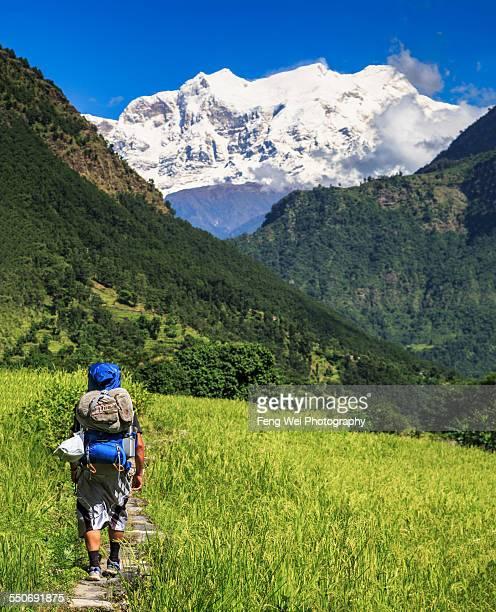 Trekking In Himalayas, Annapurna Circuit, Nepal