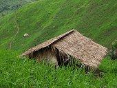 Trekking near Muang Sing