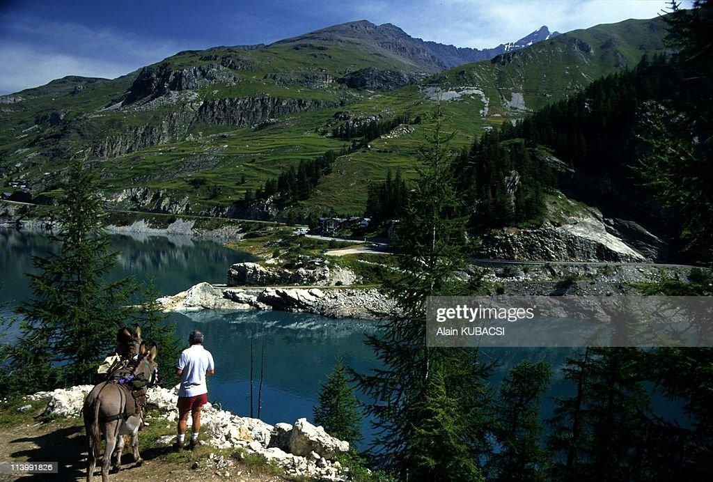 Trekking with donkeys in the Vanoise national Park in Savoie In Val D'Isere France In 2007Le Bois de la Laye Chevril dam Tignes