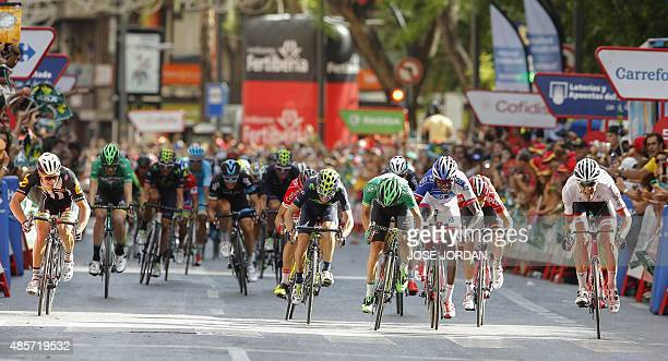 Trek's Belgian cyclist Jasper Stuyven crosses the finish line of the eighth stage of the 2015 Vuelta Espana cycling tour a 1825 km stage between...