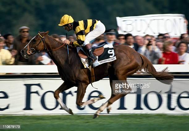 Trempolino ridden by Pat Eddery wins the Prix de l'Arc de Triomphe at Longchamp on 4th October 1987