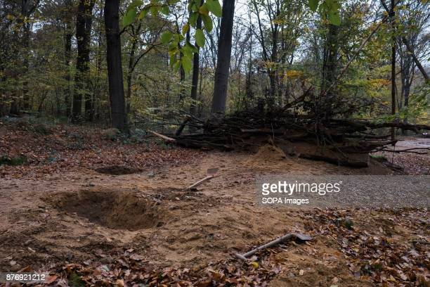 Trenches and barricades designed to slow down any eviction process Starting in 2012 the Hambach Forest occupation settlements have slowed the...