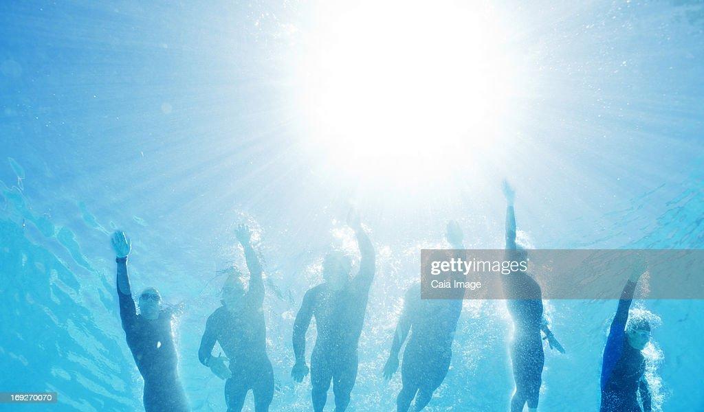 Triathletes in wetsuits underwater : Stock Photo